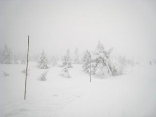 蔵王スキー1日目 樹氷