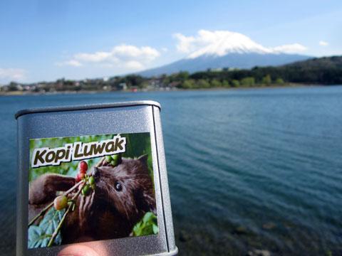 幻のうんこコーヒー、コピ・ルアクを富士山を眺めながら飲む